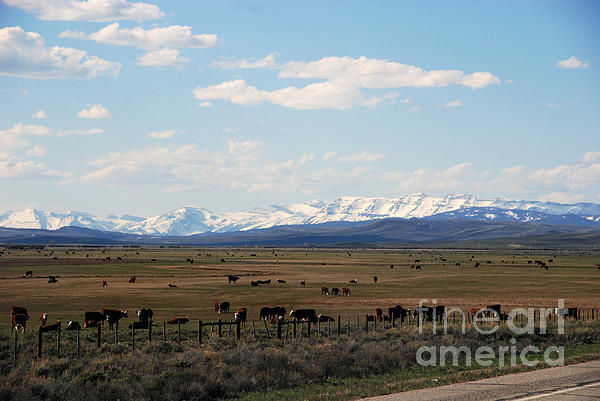 Mountains Photograph - Rural Wyoming - On The Way To Jackson Hole by Susanne Van Hulst