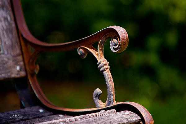 Bench Photograph - Rusty Rest by Christopher Holmes