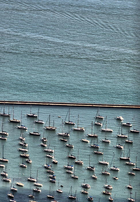Chicago Photograph - Sail N A Half by Emily Stauring