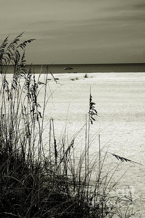 Sanibel Photograph - Sanibel Island Florida by Susanne Van Hulst