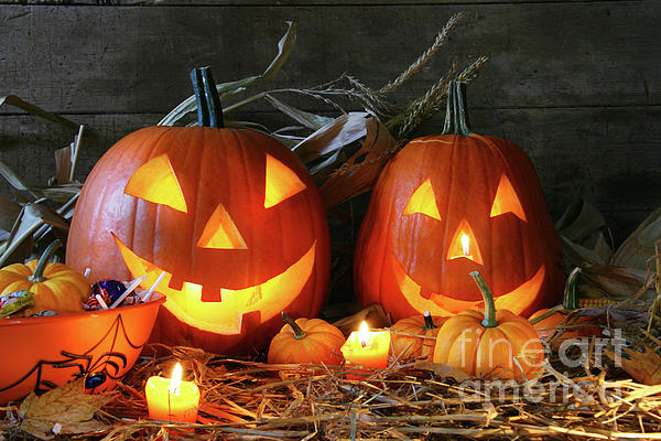 Agriculture Photograph - Scarved Jack-o-lanterns  by Sandra Cunningham