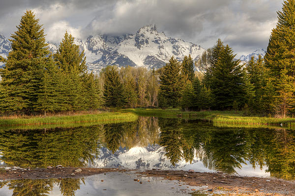 Grand Tetons Photograph - Schwabachers Landing by Charles Warren