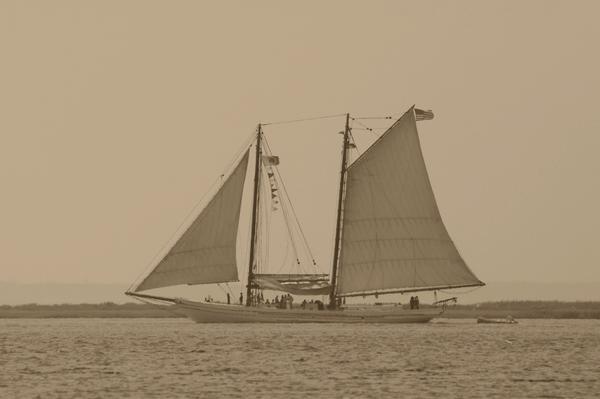 Sailing Ship Photograph - Ship 31 by Joyce StJames