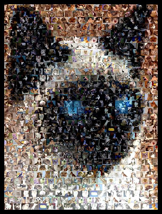 Cat Digital Art - Siamese Cat Mosaic by Paul Van Scott