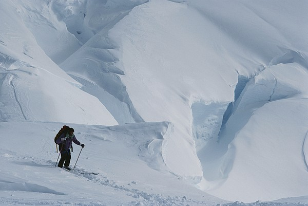 Model Released Photography Photograph - Ski Mountaineer Tom Day Above Big by Gordon Wiltsie