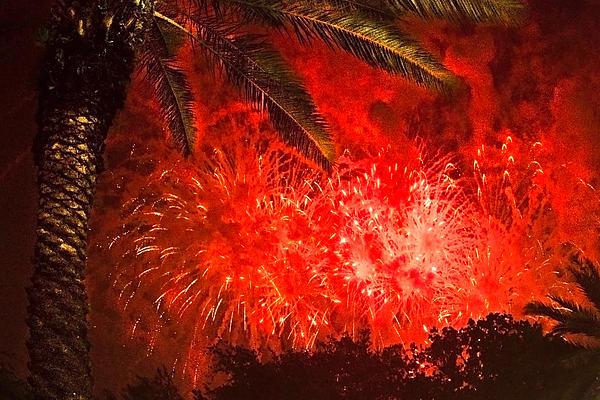 4th Of July Photograph - Sky Fire by Debra and Dave Vanderlaan