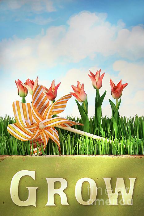 Background Photograph - Springtime Fun by Sandra Cunningham