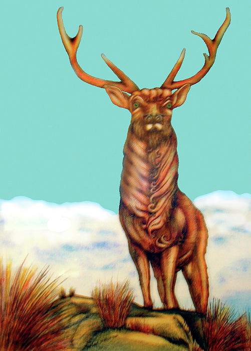 Stag Painting - Stag by Barbara Stirrup