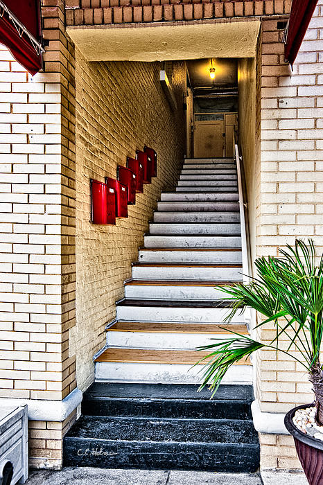 Taris Photograph - Stairway by Christopher Holmes