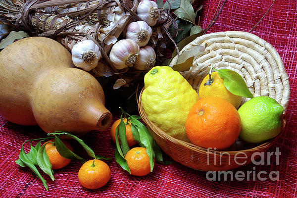 Arrangement Photograph - Still-life by Carlos Caetano