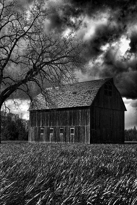 Barn Photograph - Stormy by Bonnie Bruno