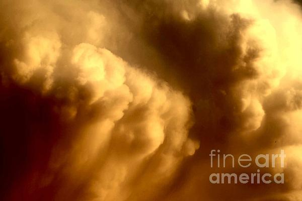 Updraft Photograph - Strong Updraft by Anita Floyd