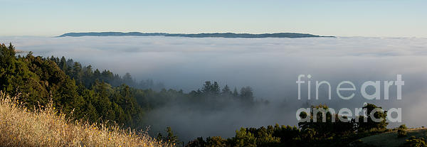 Mountain Photograph - Summer Fog Rolls In by Matt Tilghman