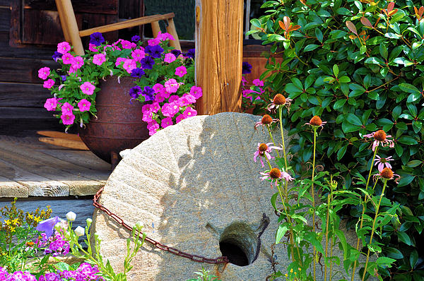 Still Life Photograph - Summer Millstone by Jan Amiss Photography