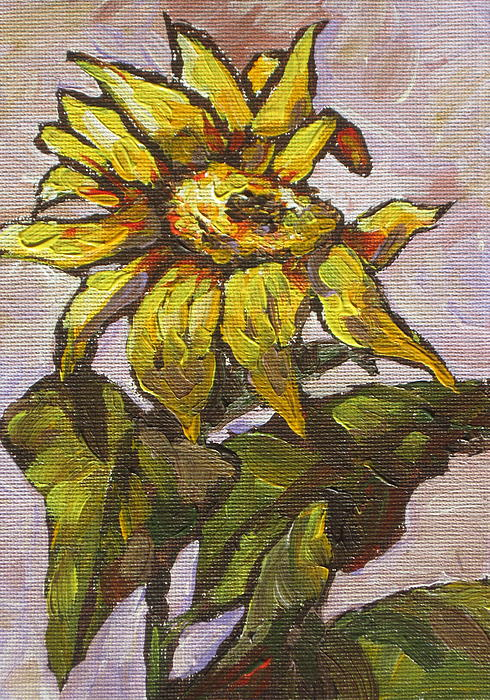 Sun Painting - Sunflower 5 by Sandy Tracey