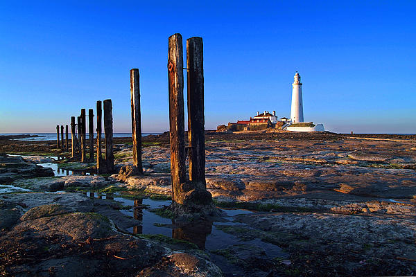 Landscape Photograph - Sunset At St. Marys Lighthouse by Michael Oakes