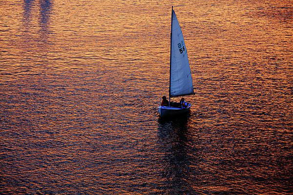 Boston Photograph - Sunset Sailing by Rick Berk