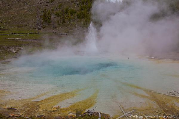 Yellowstone Photograph - Superior Geyser 1 by Charles Warren