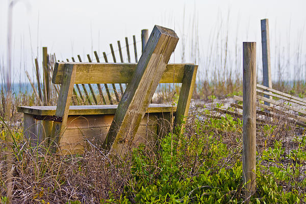 Topsail Photograph - Surf City Chair by Betsy Knapp