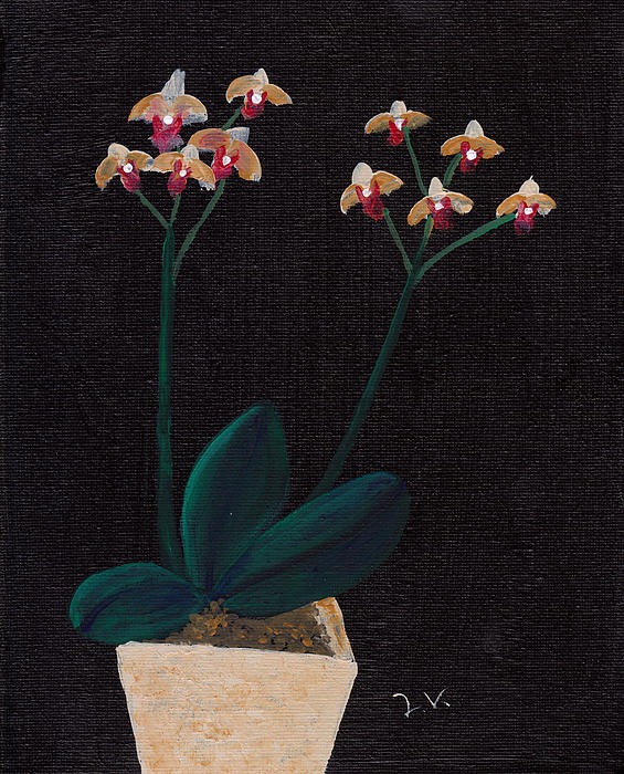 Orchid Painting - Table Orchid by M Valeriano