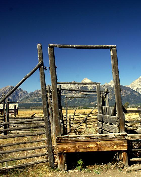 Ranch Photograph - Teton Ranch by Marty Koch