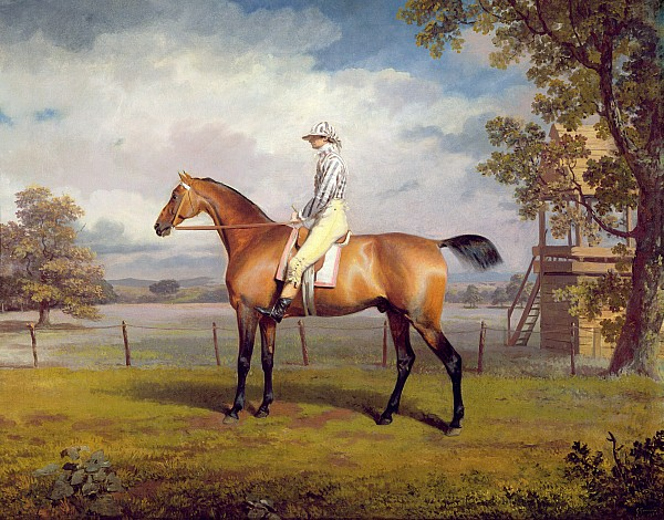 The Painting - The Duke Of Hamiltons Disguise With Jockey Up by George Garrard