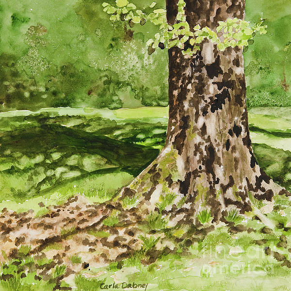 Sycamore Painting - The Green Grass Grew All Around by Carla Dabney