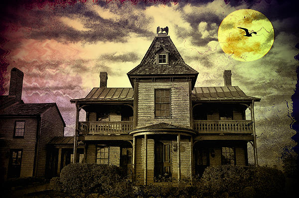 Haunted Photograph - The Haunted Mansion by Bill Cannon