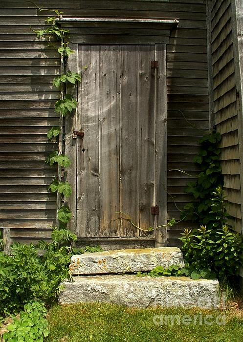 Door Photograph - The Ivied Door by Theresa Willingham