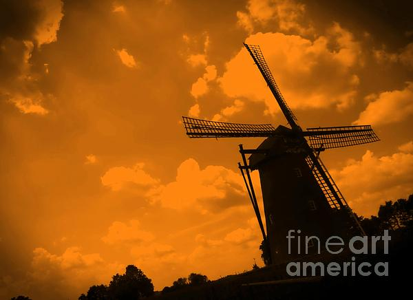 Holland Photograph - The Land Of Orange by Carol Groenen