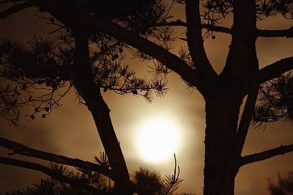 Japan Photograph - The Moon Rises Above Nanko Lake by Michael S. Yamashita