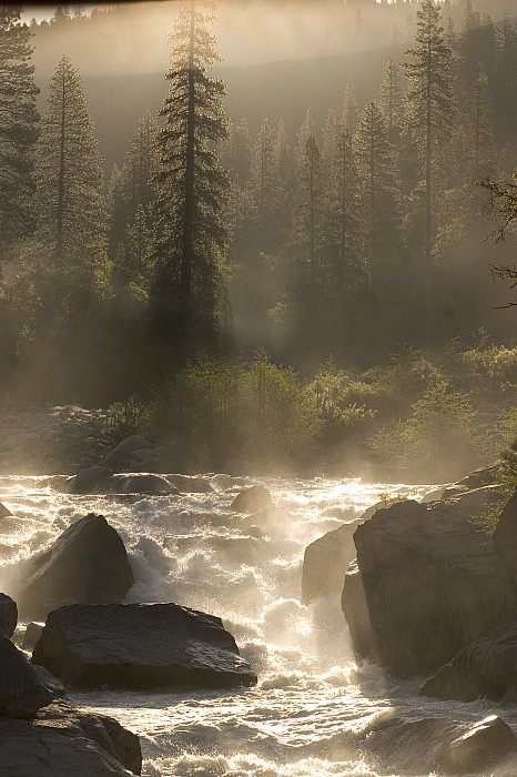 Outdoors Photograph - The North Fork Of The Stanislaus River by Phil Schermeister