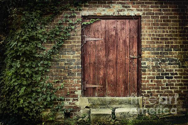 Door Photograph - The Old Red Door by Sari Sauls