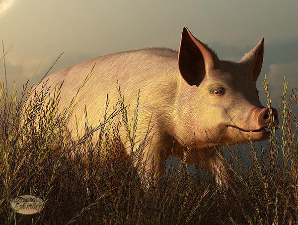 Pig Digital Art - The Pink Pig by Daniel Eskridge