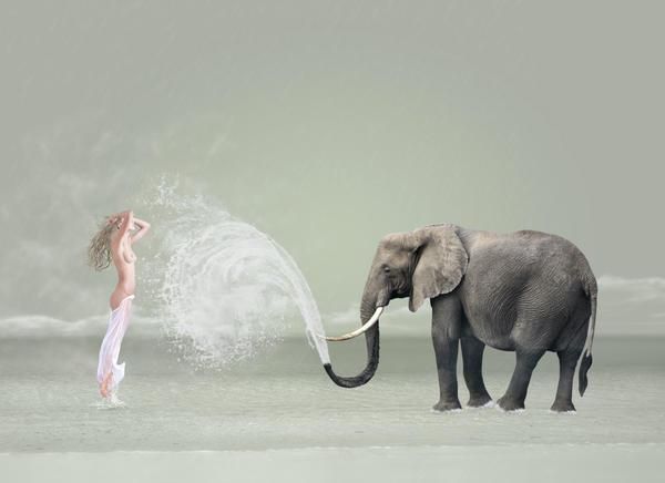 Rain Digital Art - The Snowflake Dreamer II by Caras Ionut