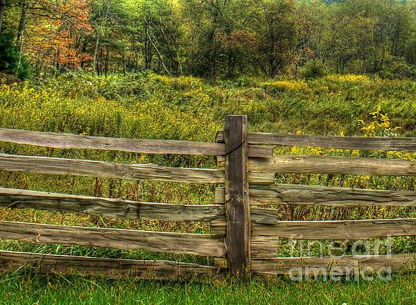 Split Rail Fence Photograph - The Split Rail Meadow by Benanne Stiens