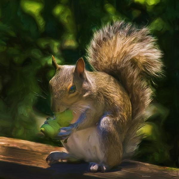 Squirrel Painting - They Are Mine All Mine by Steven Richardson