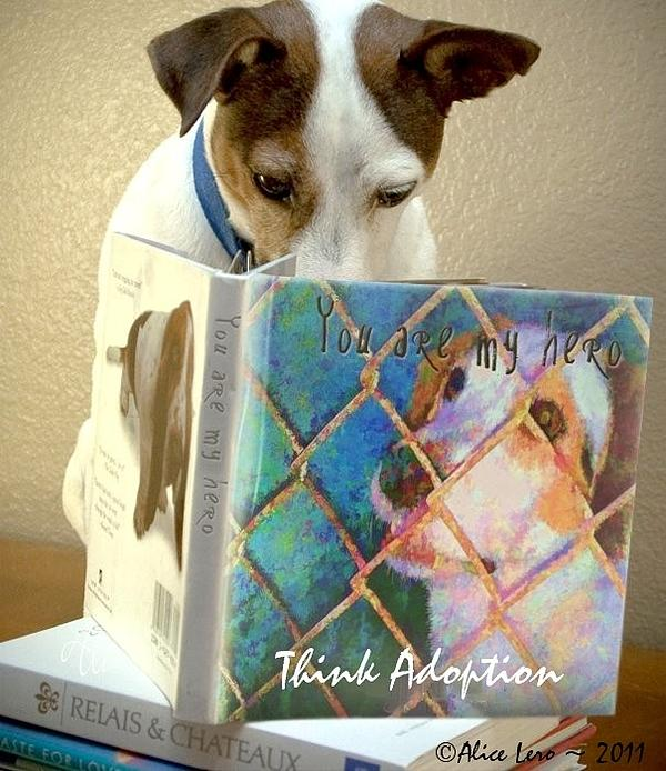 Dogs Photograph - Think Adoption by Alice Lero