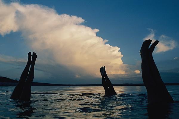 North America Photograph - Three Pairs Of Legs Stick by Joel Sartore