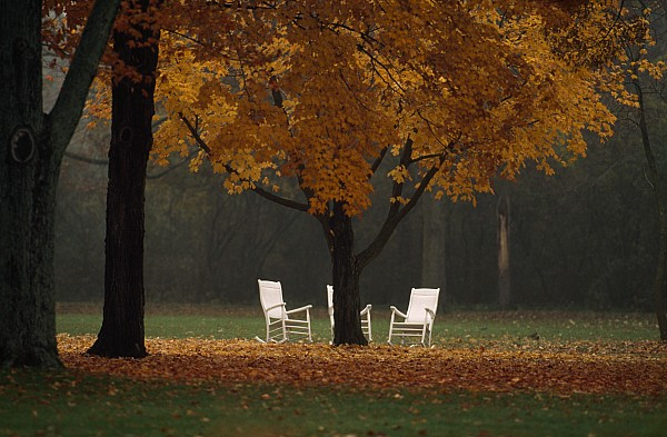 Minnesota Photograph - Three Welcoming Rocking Chairs Under An by Paul Chesley