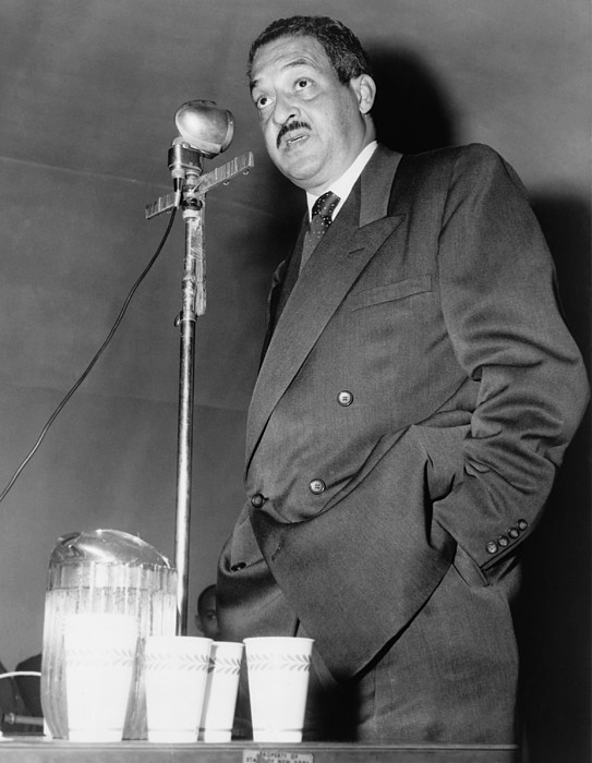 History Photograph - Thurgood Marshall, Then Chief Counsel by Everett