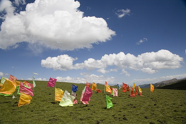 Qinghai Province Photograph - Tibetan Prayer Flags In A Field by David Evans