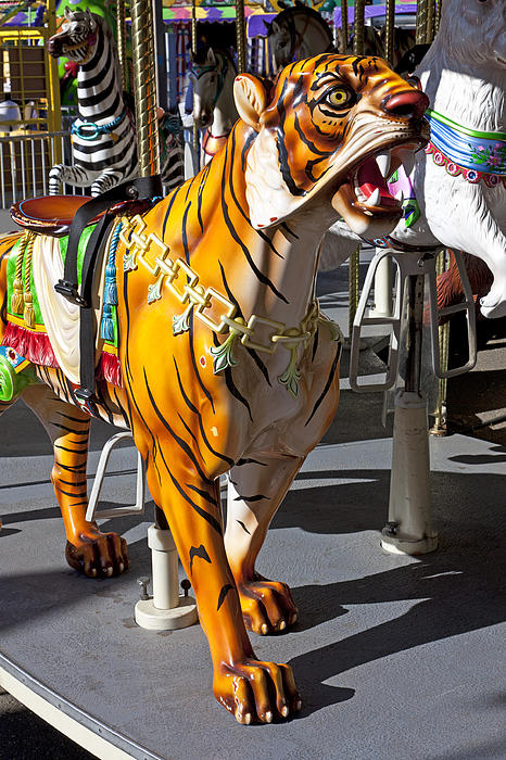 Tiger Photograph - Tiger Carousel Ride by Garry Gay