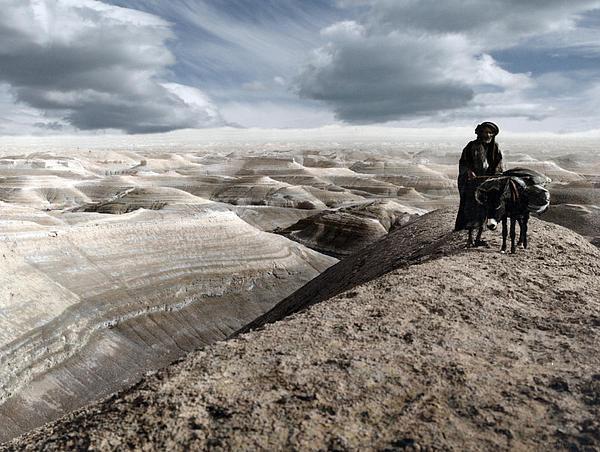Travel Photograph - Traveling Through The Desert by Munir Alawi