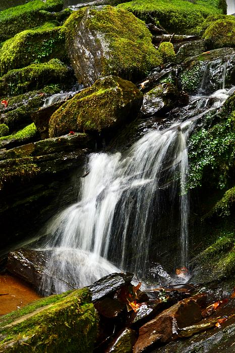 Waterfall Photograph - Trickle Trickle by Love Photography By Mandy
