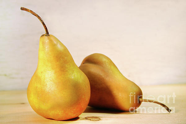 Apple Photograph - Two Pears by Sandra Cunningham