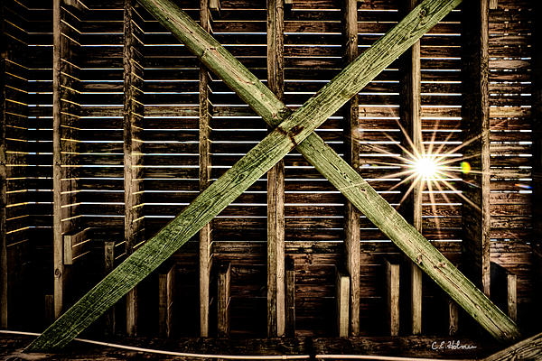 Pier Photograph - Under The Pier by Christopher Holmes