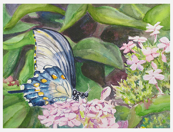 Butterfly Painting - Vacition Butterfly by Judy Loper