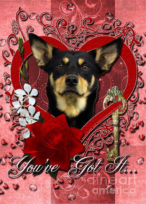 Kelpie Digital Art - Valentines - Key To My Heart Australian Kelpie by Renae Laughner