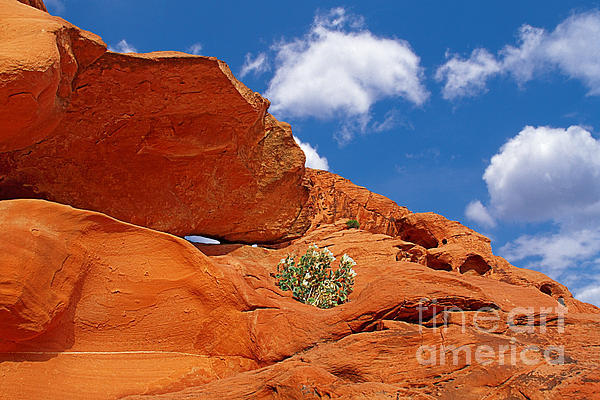 Nevada Photograph - Valley Of Fire - Adventure In Color And Beauty by Christine Till